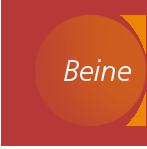 Chiropraktik München - Anwendungsgebiet Beine